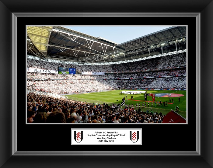 Sky Bet championship Final Picture (16x12)