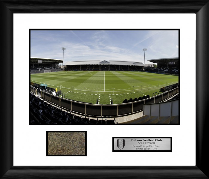Craven Cottage Pitch and Grass Picture 2018