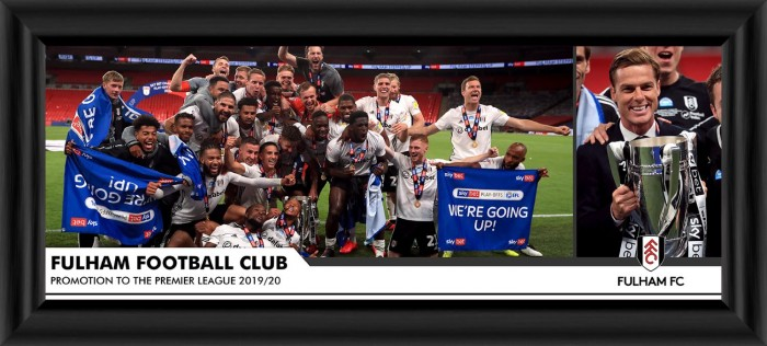Framed Panoramic Celebration Photo